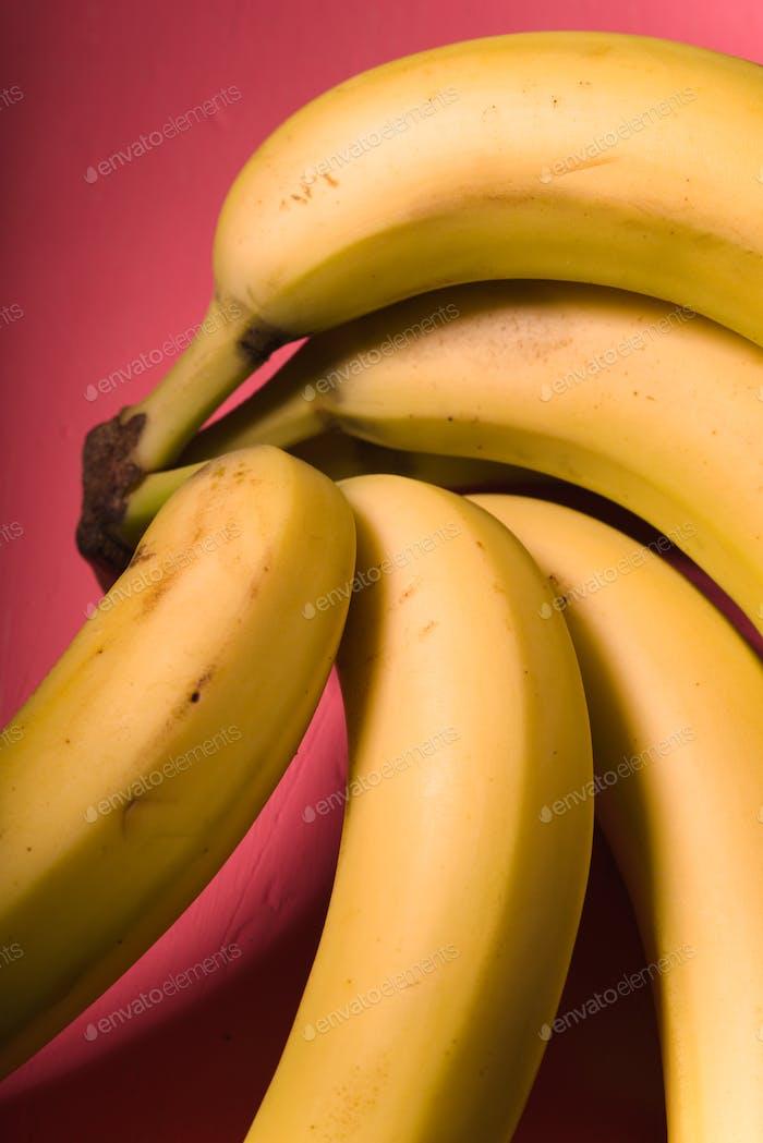 Bündel Bananen auf dem leuchtend rosa Hintergrund