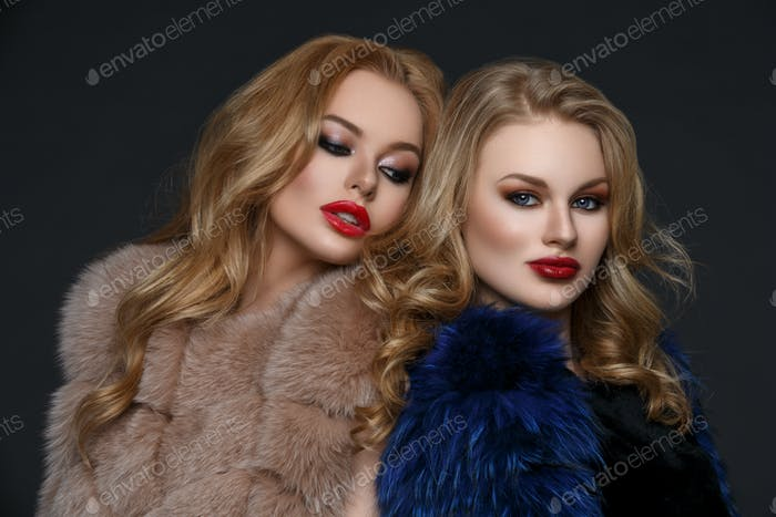 Две красивые девушки в моде меховые пальто