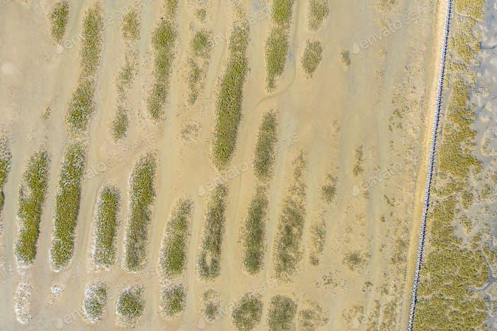 Top down view of Tidal Marshland Waddensea