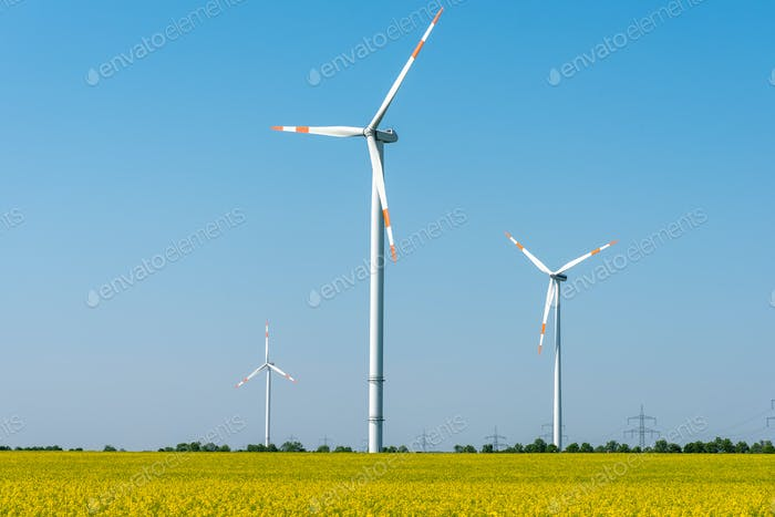 Blooming rapeseed field with wind turbines