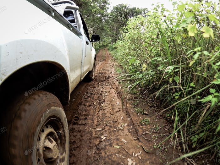 The car's wheels on the dirt road.
