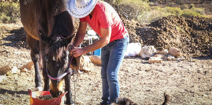 Cowboy lifestyle man work with horses animals in outdoor
