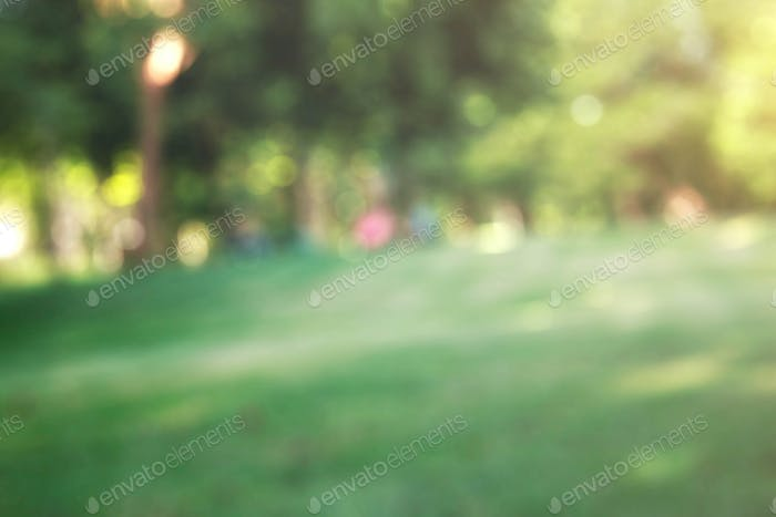 Grass and trees with blurred background