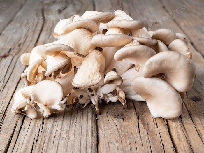 edible mushroom oyster mushroom on old rustic wooden table, side view