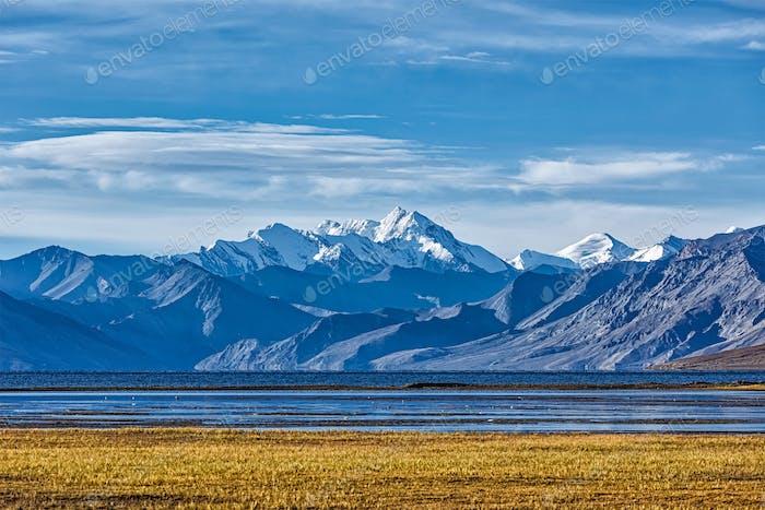 Himalayan lake Tso Moriri in Himalayas, Ladakh