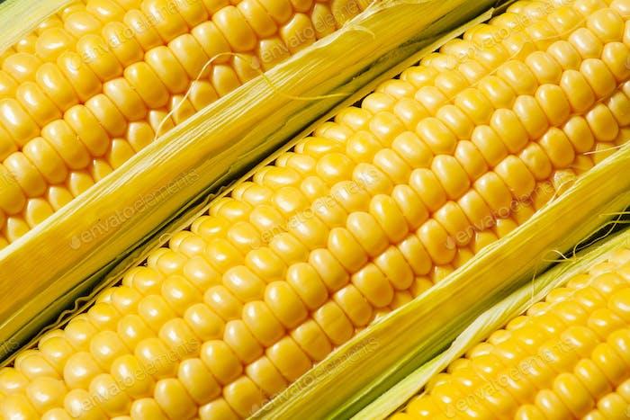 Reife gelbe Mais, Draufsicht