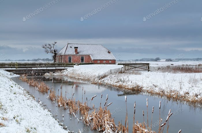 winter in Dutch farmland