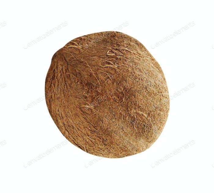 Kokosnuss isoliert auf weiß