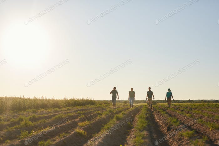 Arbeiter, die im Feld gehen