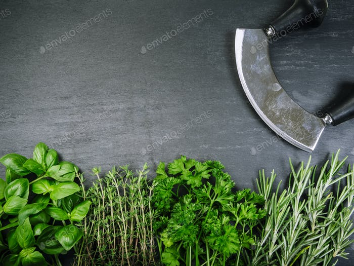 Herbs and cutter on slate background