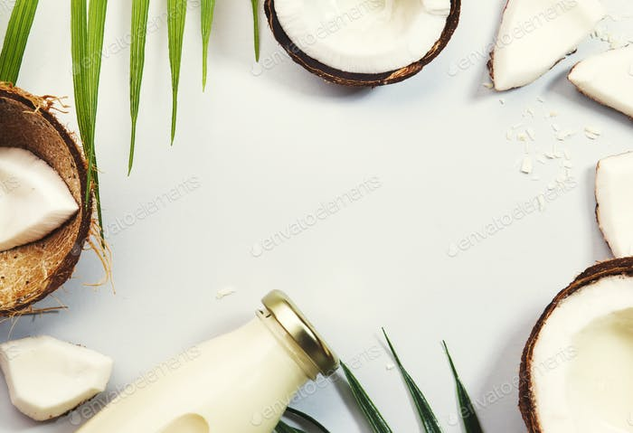 Coconut non dairy vegan milk in bottles