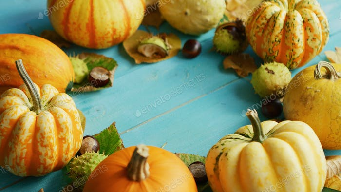 Pumpkins and chestnuts laid in circle