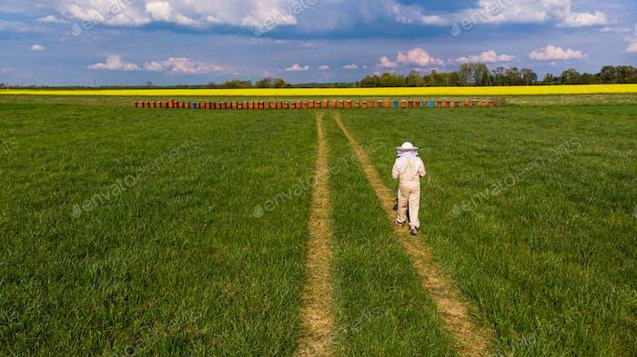 Apiarist Beekeeper Walking to Beehives in Meadow at Countryside