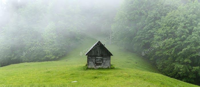 Одна каюта в лесу