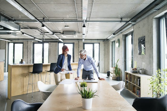Two business people in the office talking together.