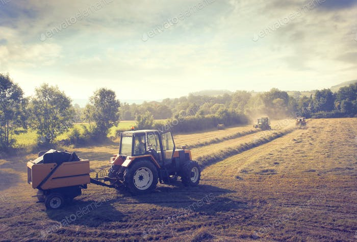 Tractor in the Countryside