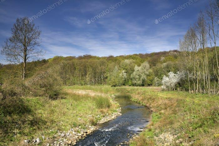 The Geleenbeek river