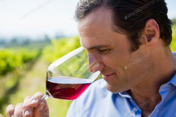 Vintner smelling glass of wine