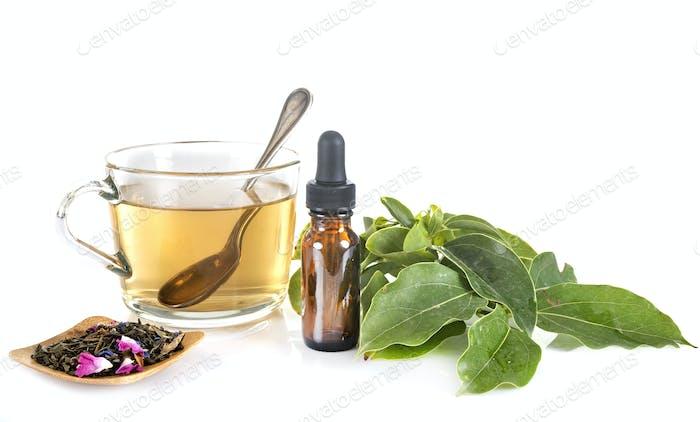 tea and alternative medicine