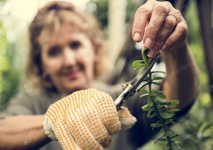 Frau abgeschnitten Blätter