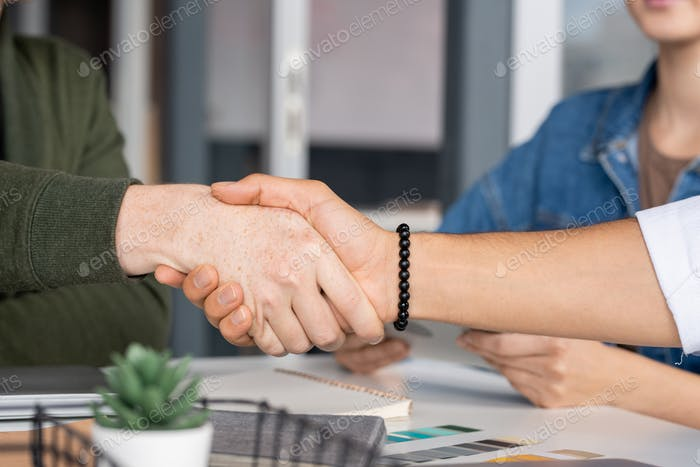 Hand of young Caucasian businessman shaking that of mixed-race male colleague