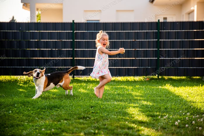 Baby girl running with beagle dog in garden on summer day. Domestic animal with children concept