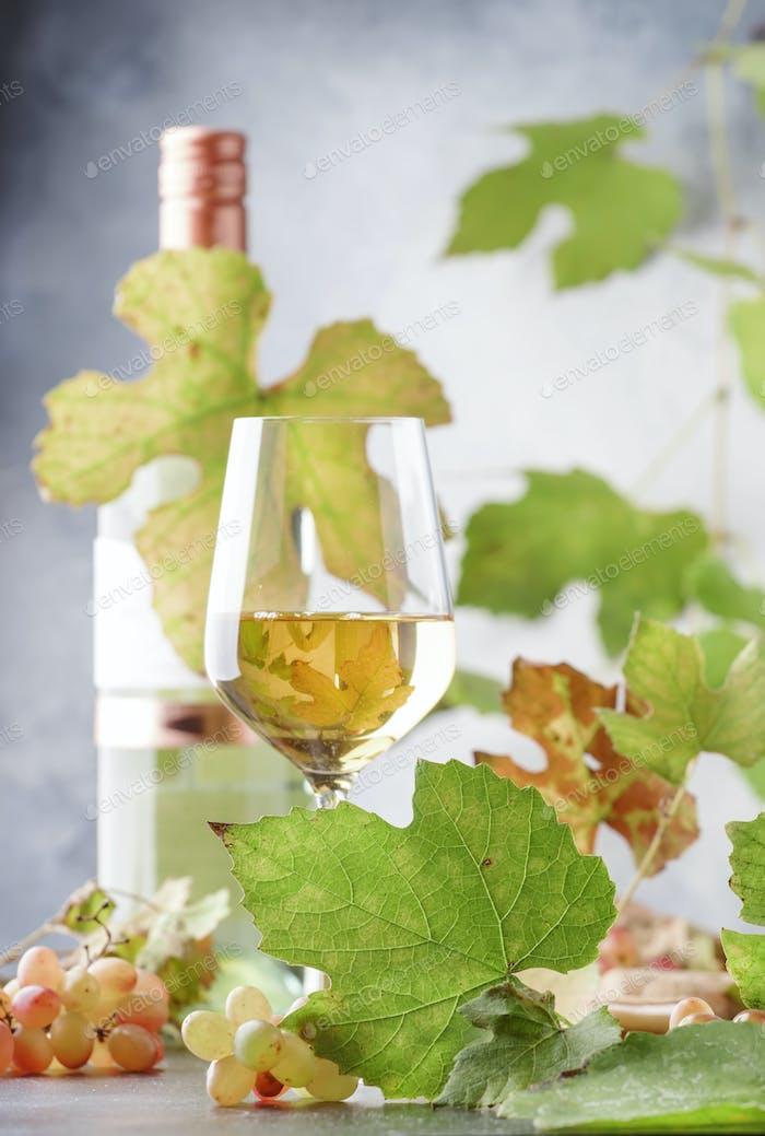 Weißweinglas auf grauem Hintergrund