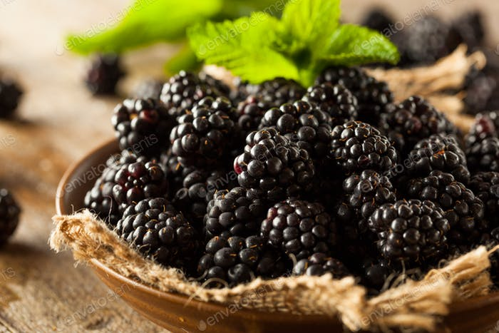 Fresh Raw Organic Blackberries