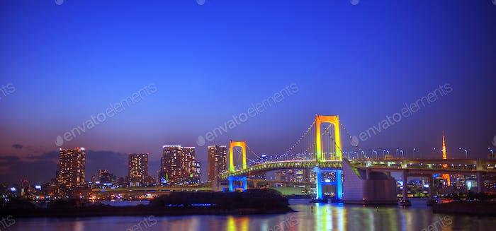 Panaroma Of Illuminated Tokyo