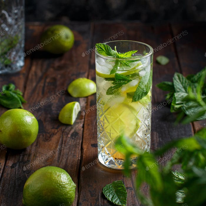 Homemade refreshing mojito cocktail in a tall glass