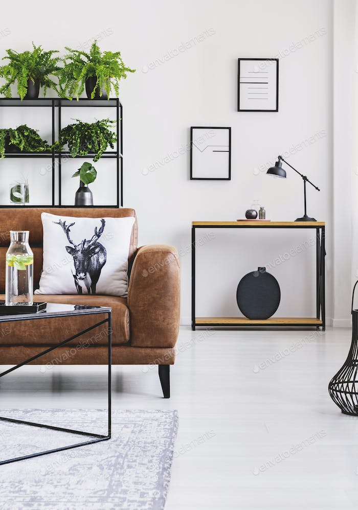 Urban jungle in modern home interior. Pots with plant on a shelf