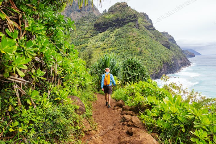 Hike in Hawaii