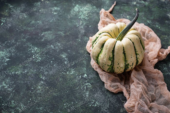 Decorative pumpkin on green concrete background