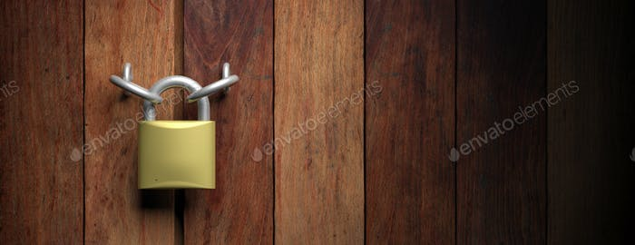 Padlock on wooden door background. 3d illustration