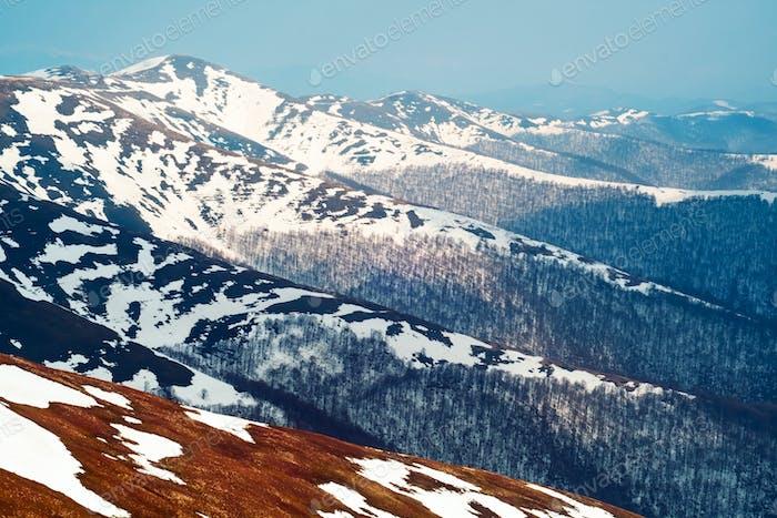 Schneebedeckte Hügel mit nacktem Wald