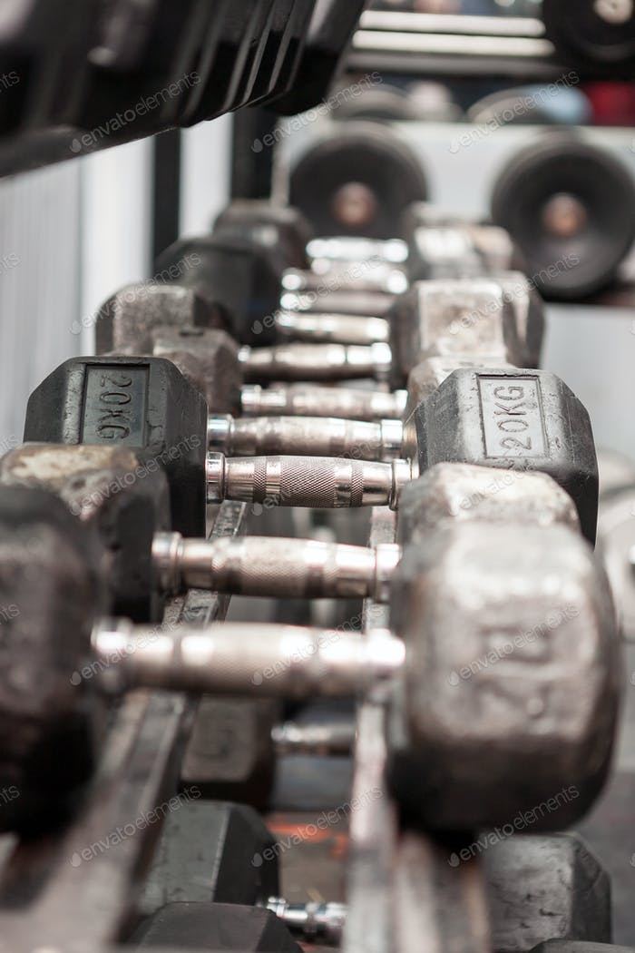 Weights in the row in a gym