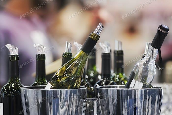 Bottles of red wine in chromium buckets