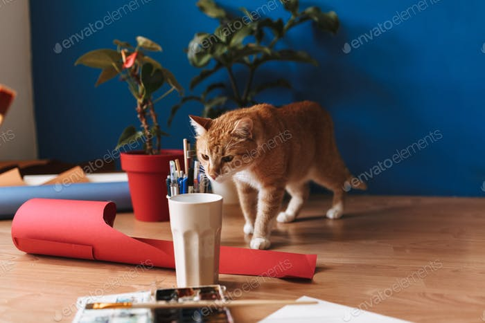 Close up curious cat sniffing glass with paint tools on floor at