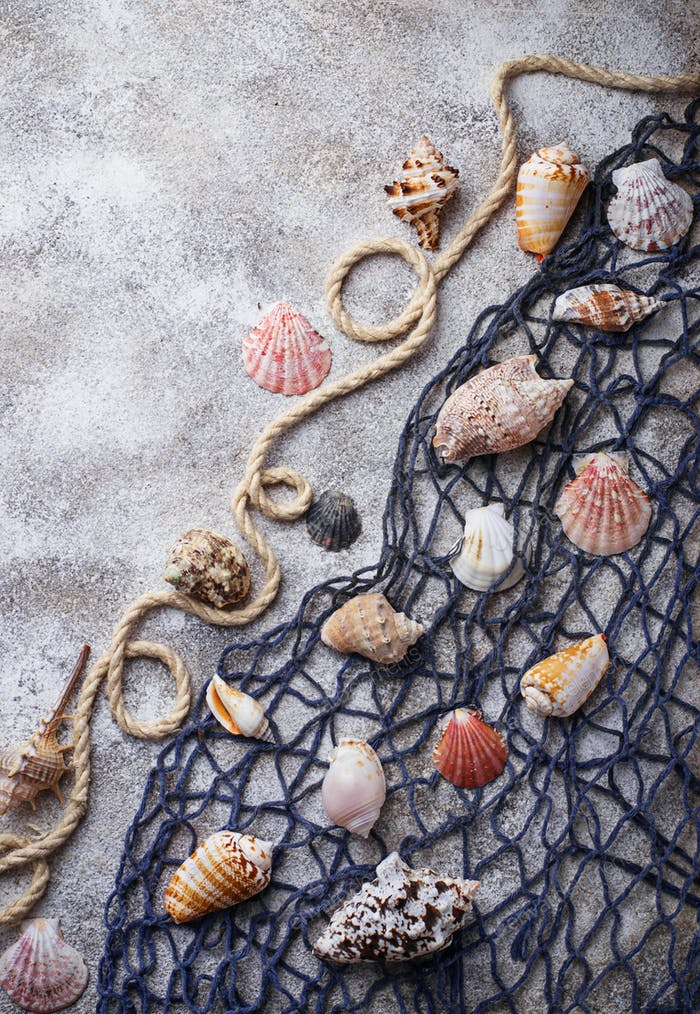 Marine items: sea shells, rope, fishnet