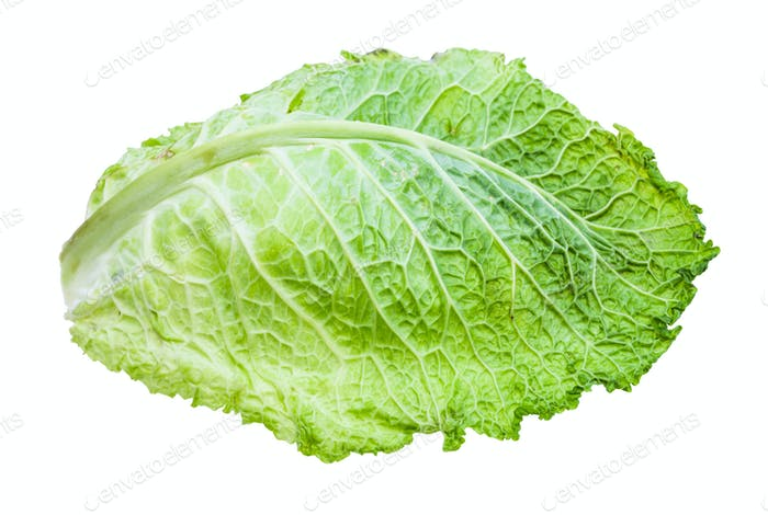 green leaf of savoy cabbage isolated on white