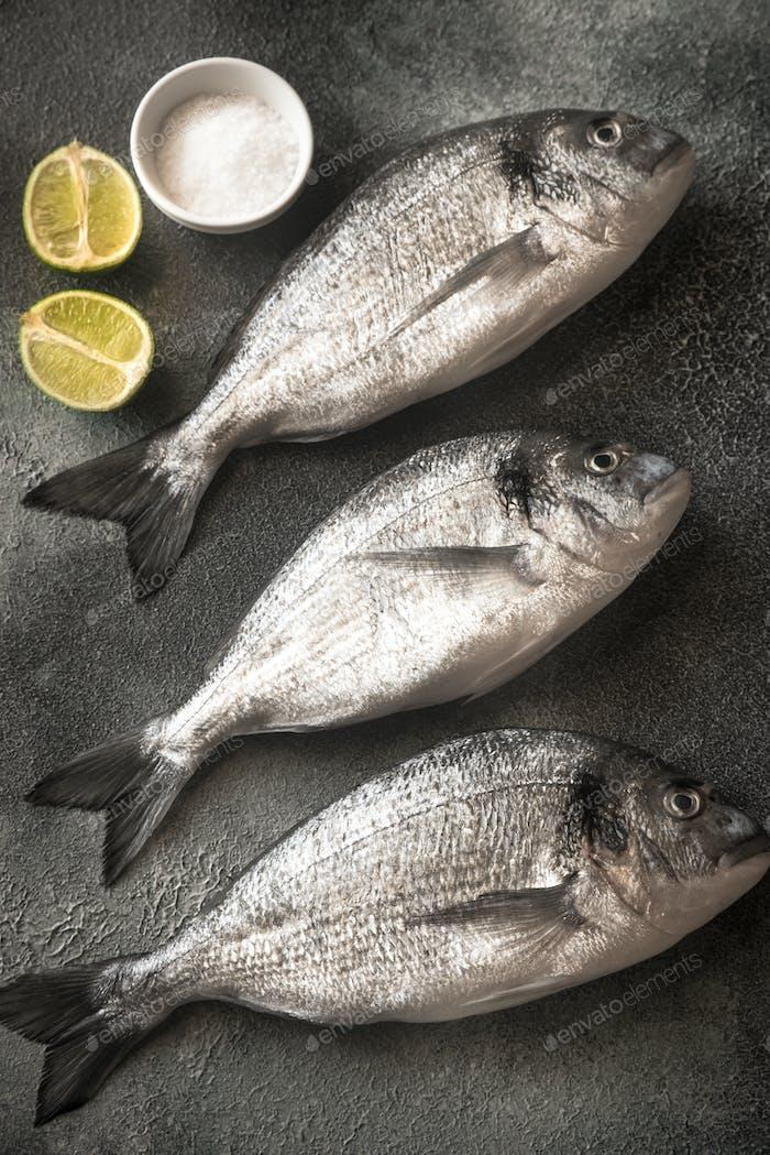 Sea bream (dorada) fish