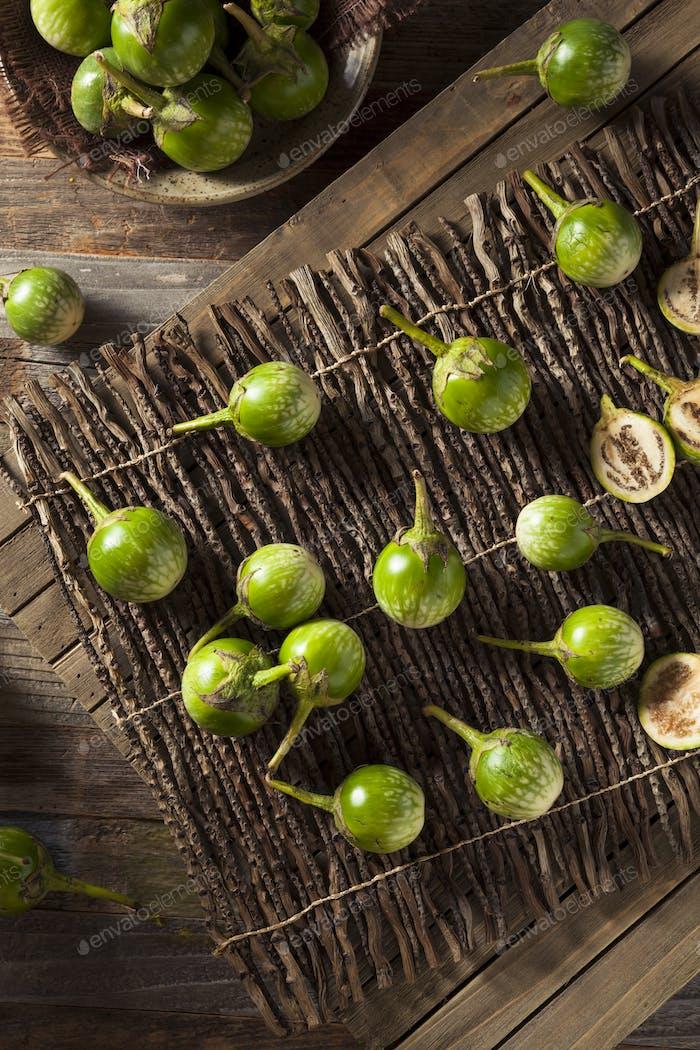 Raw Green Thai Eggplants