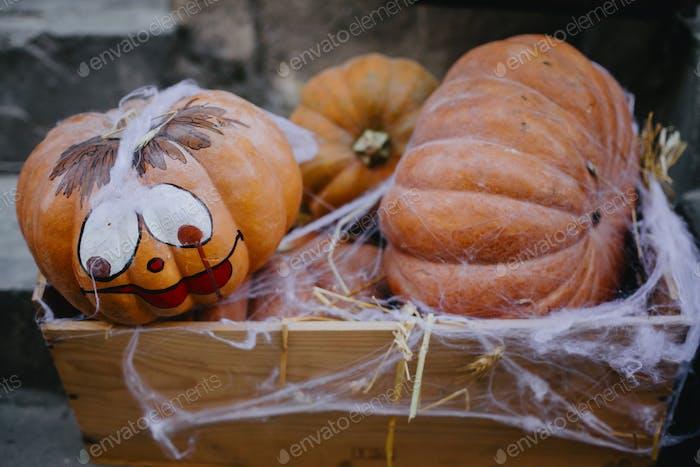 Festliche Halloween-Straßendekoration