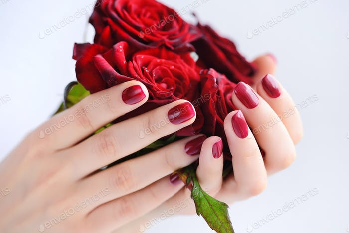 Hands of a woman with dark red manicure with a bouquet of red ro