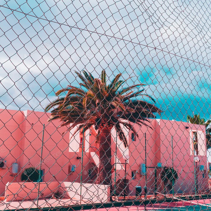 Tropical island location. Palms and pink urban. Minimal art