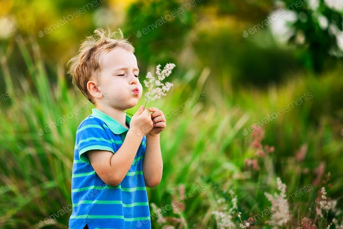 Boy blowing on a dandelion in the summer in the park