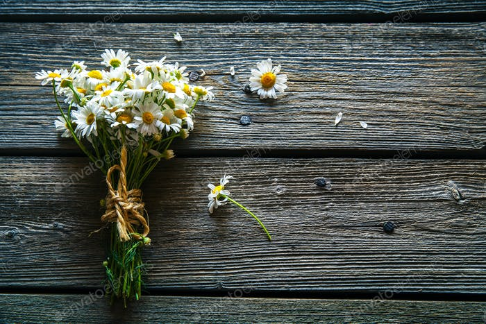 Bouquet of daisy flowers on a wooden background
