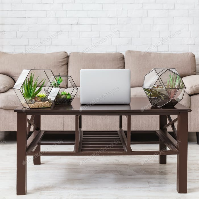 Glass florariums and laptop on wooden table in room