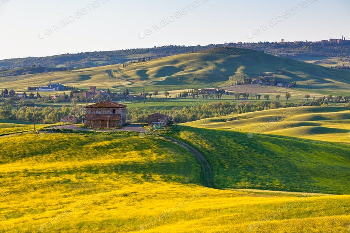 Outdoor Tuscan Val d Orcia green and yellow hills