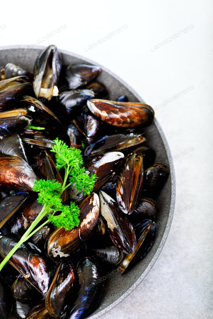 Boiled mussels with seaweed, sea plants on white stone concrete background. Top view, copy space